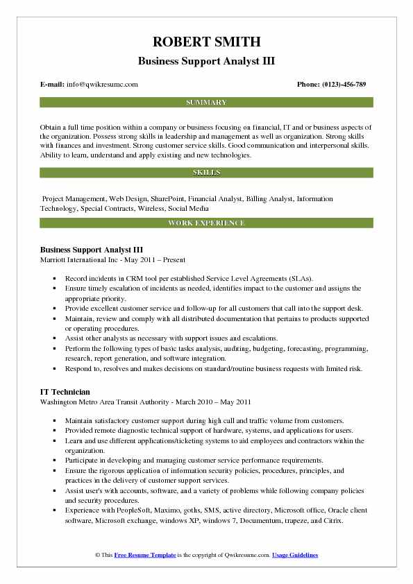 Business Support Analyst III Resume Example