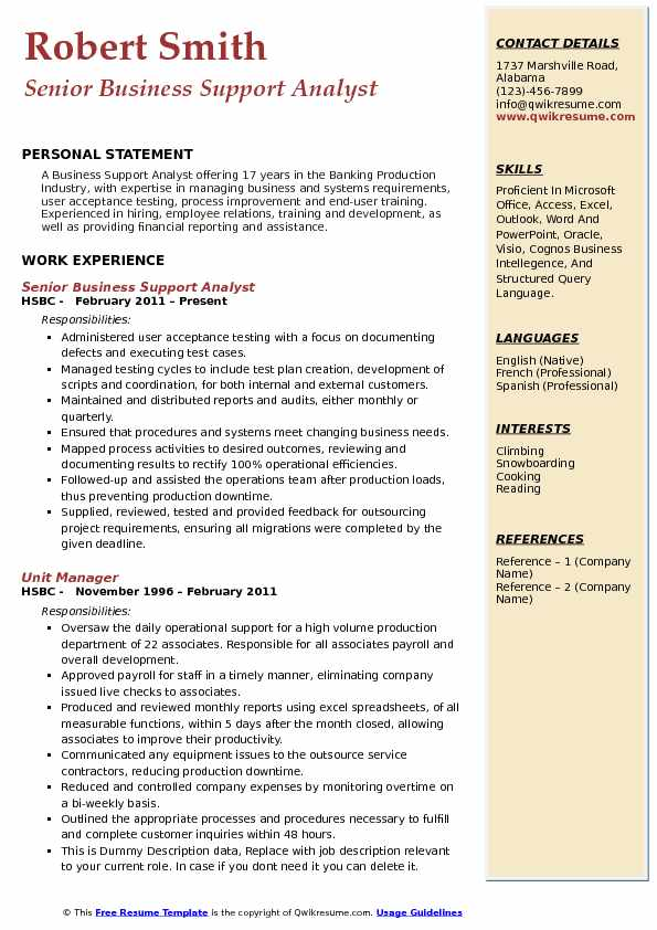 Senior Business Support Analyst Resume Model
