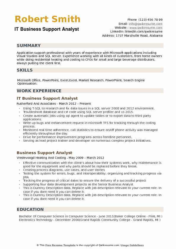 IT Business Support Analyst Resume Model