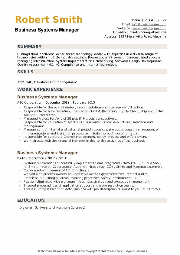 Business Systems Manager Resume example