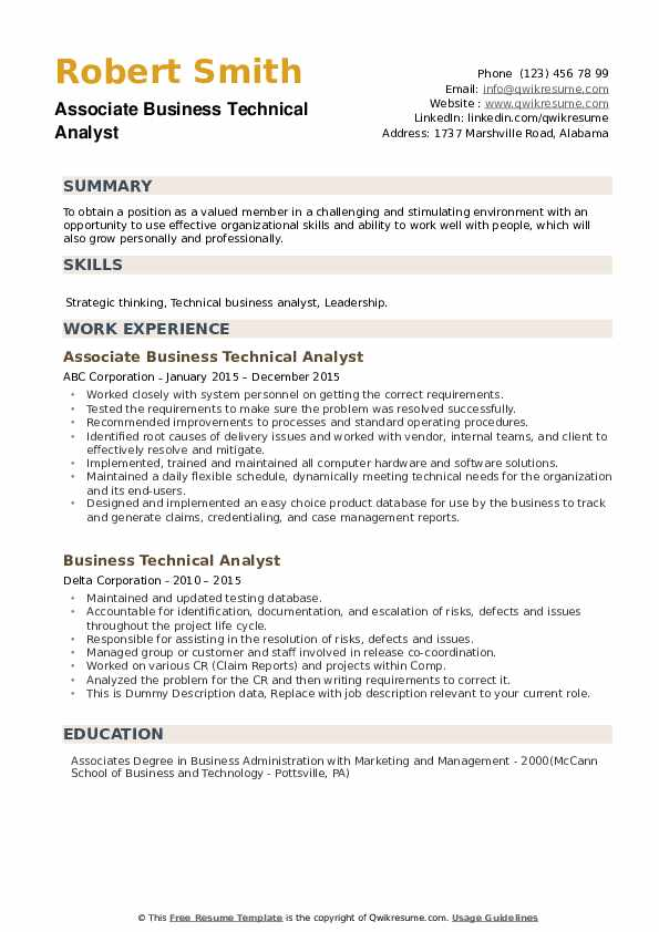 Business Technical Analyst Resume example