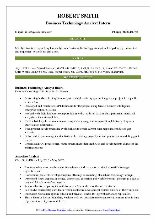 Business Technology Analyst Intern Resume Example