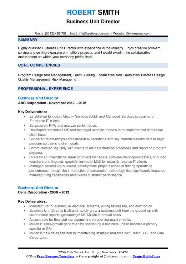 Business Unit Director Resume example