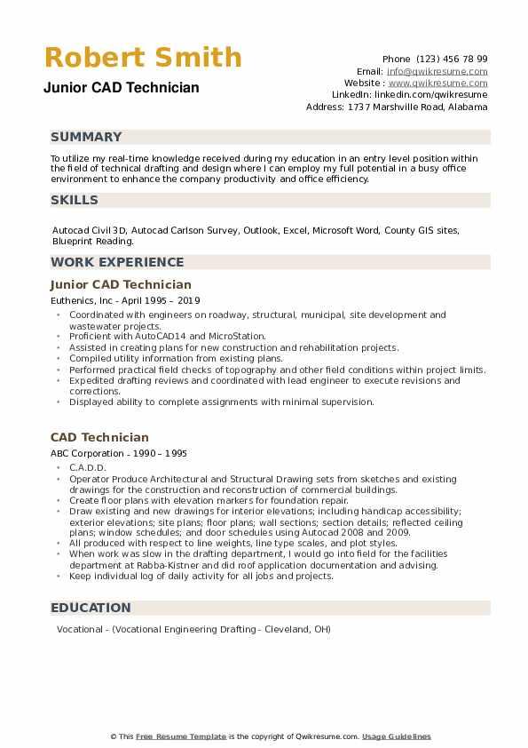 Junior CAD Technician Resume Format