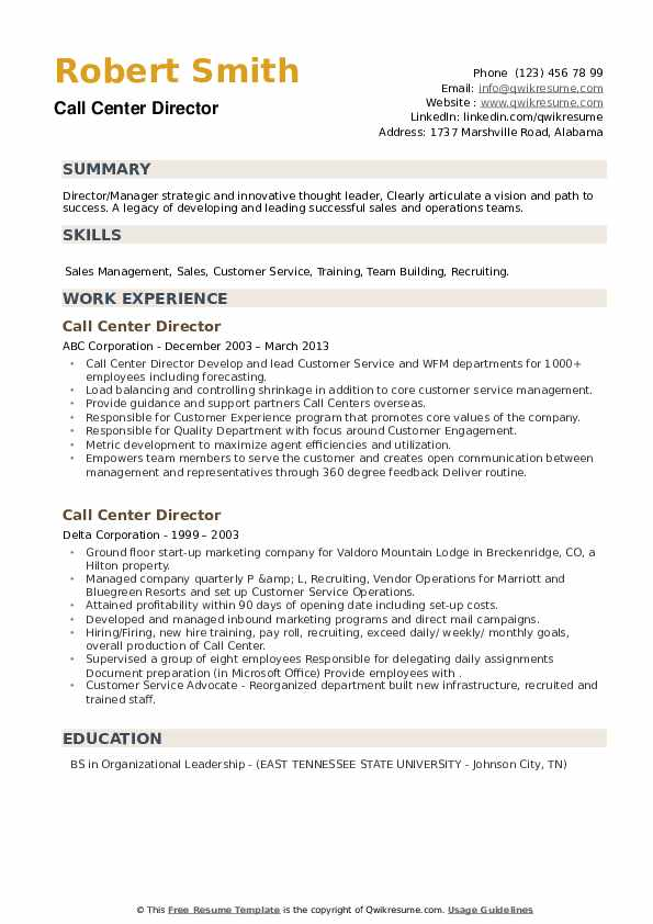 Call Center Director Resume example