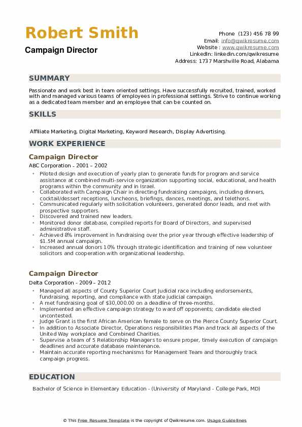 Campaign Director Resume example