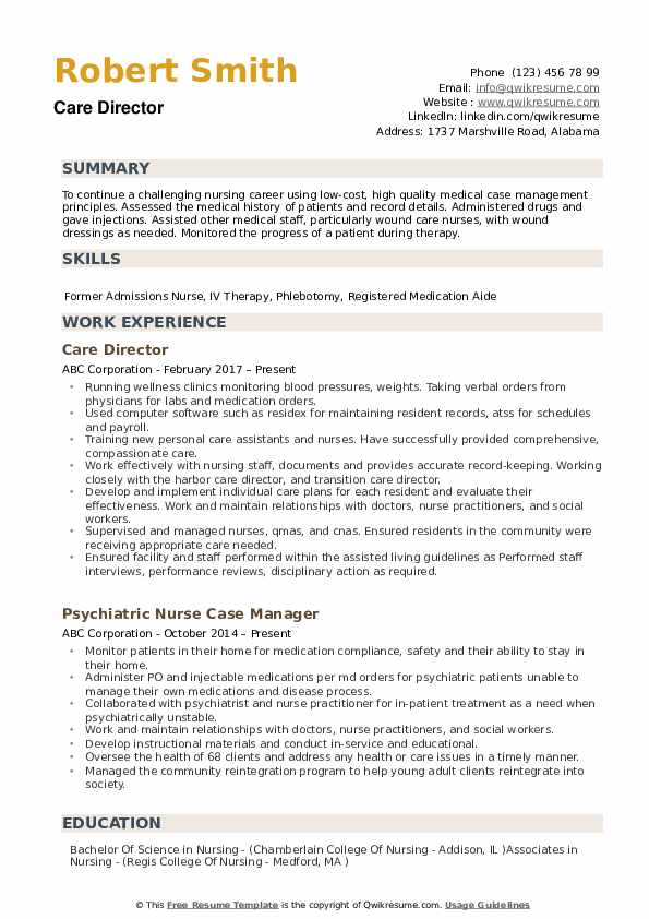 Care Director Resume example