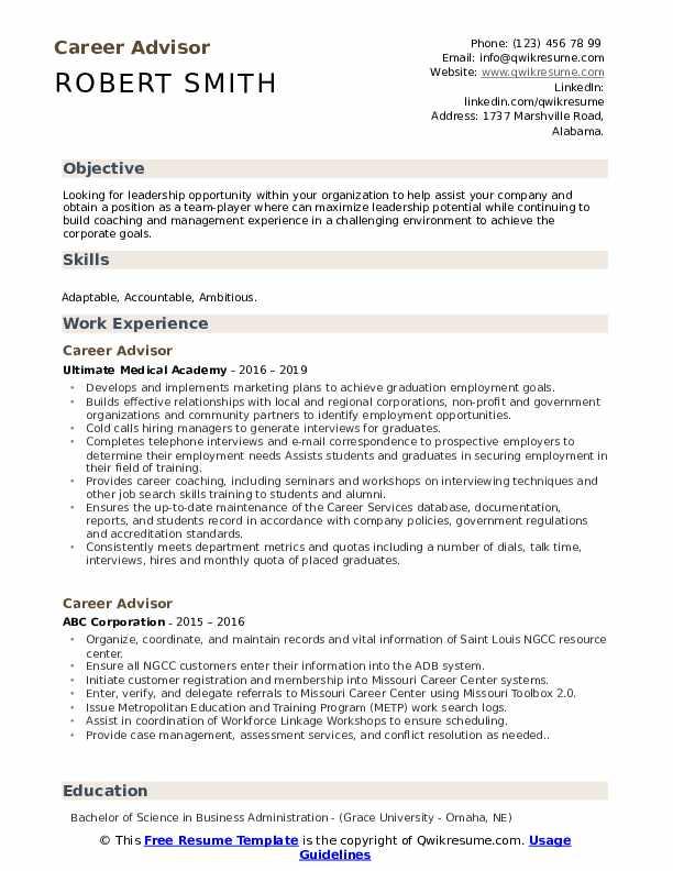 Career advisor objective resume drag essay