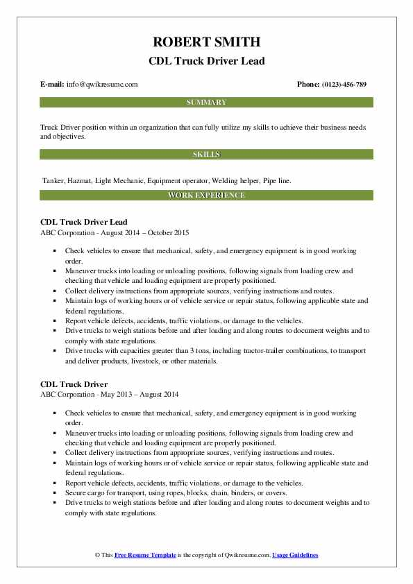CDL Truck Driver Lead Resume Example