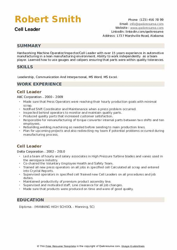 Cell Leader Resume example
