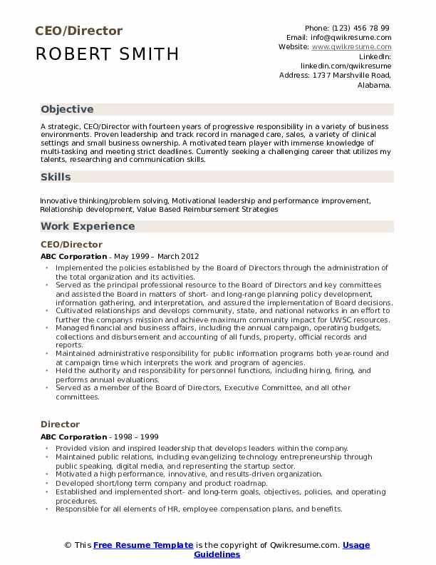 CEO/Director Resume Example