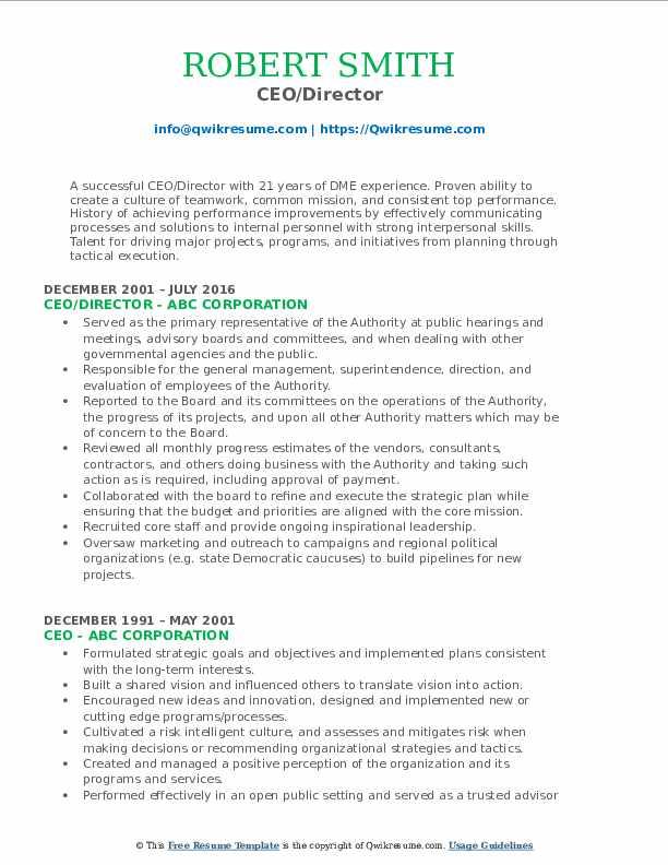 CEO/Director Resume Model