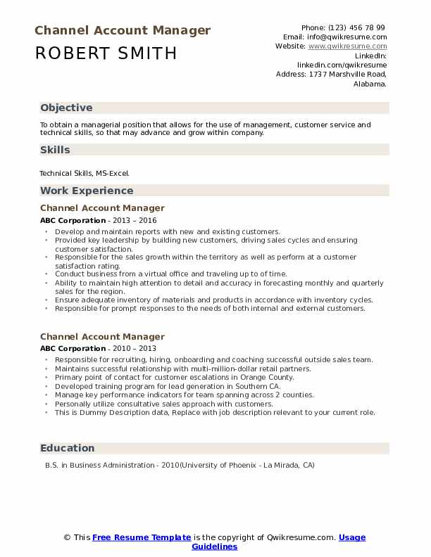 Channel Account Manager Resume example