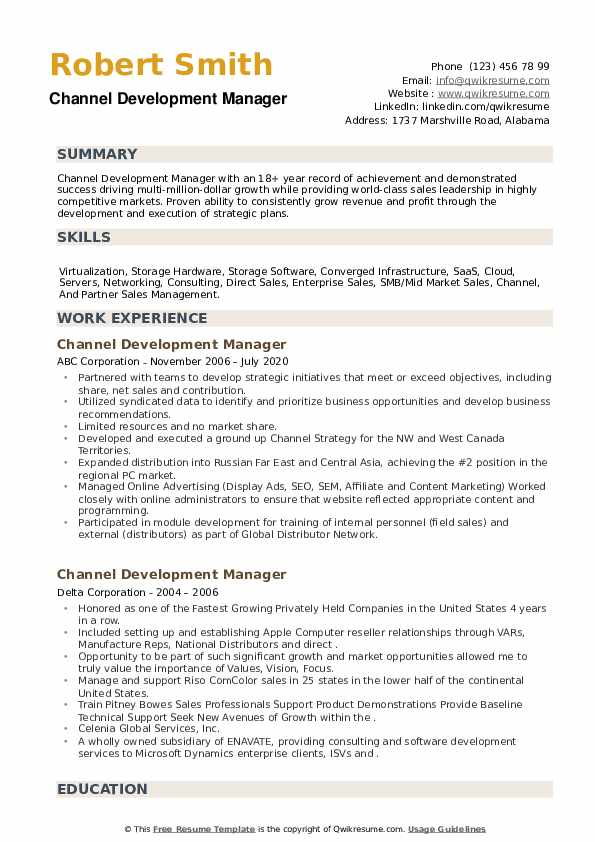 Channel Development Manager Resume example