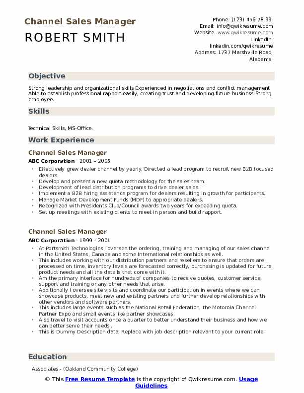 Channel Sales Manager Resume example