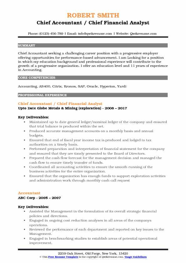 Chief Accountant / Chief Financial Analyst Resume Model