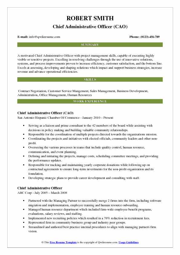 Chief Administrative Officer (CAO) Resume Sample