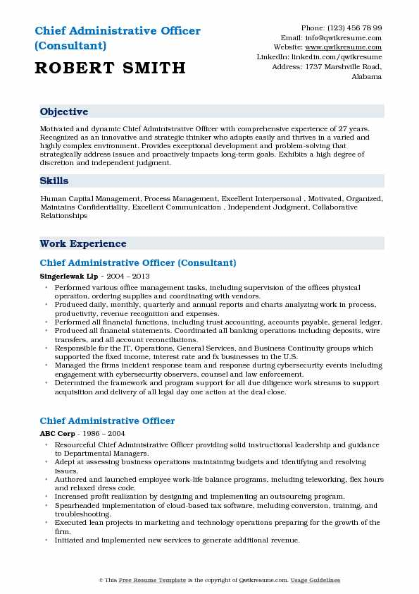 Chief Administrative Officer (Consultant) Resume Sample