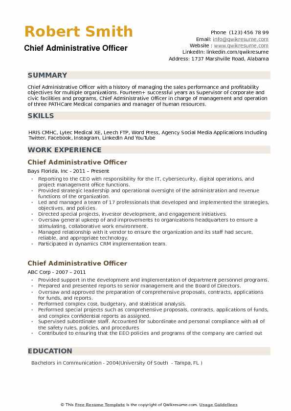 Chief Administrative Officer Resume Example