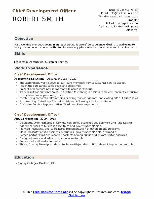 Chief Development Officer Resume example