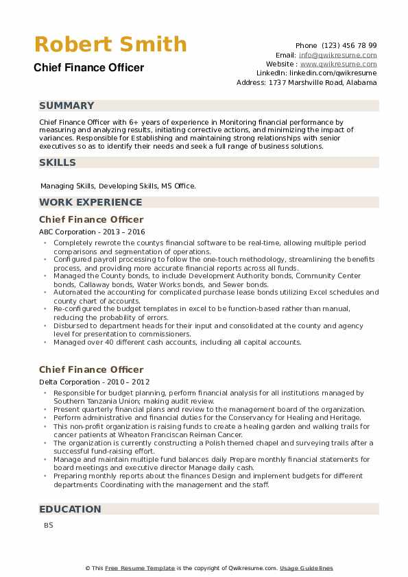 Chief Finance Officer Resume example