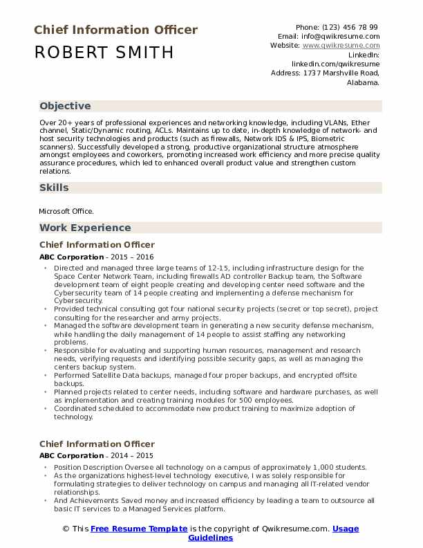 Chief Information Officer Resume Example