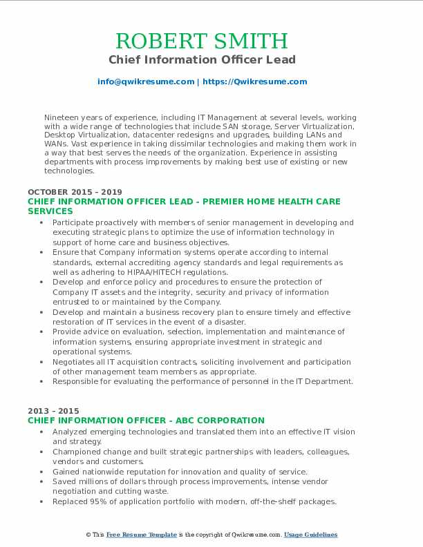 Chief Information Officer Lead Resume Example
