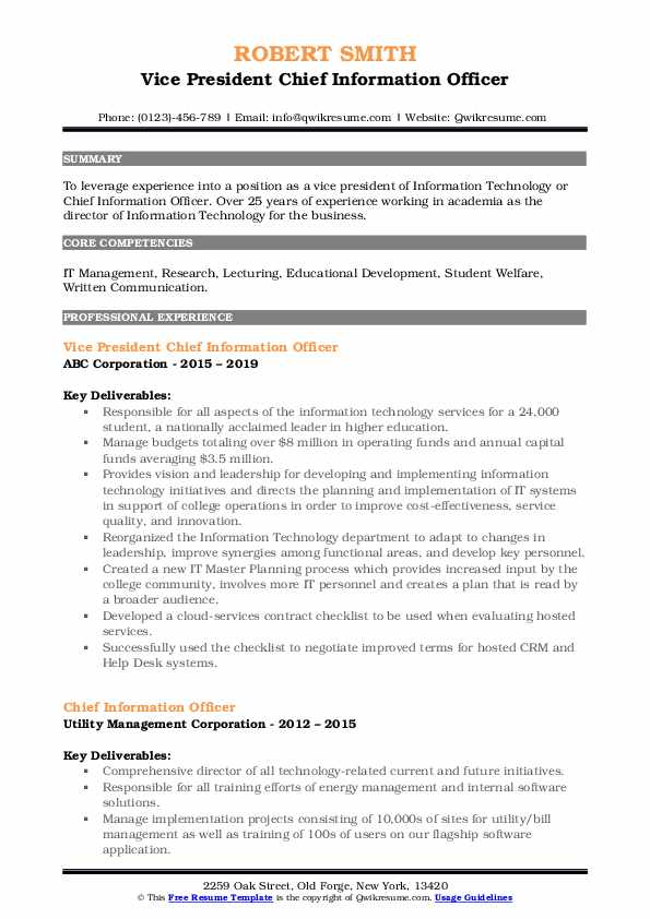 Vice President Chief Information Officer Resume Example