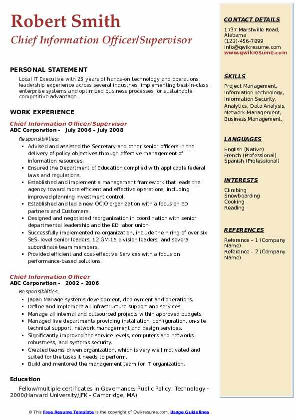Chief Information Officer/Supervisor  Resume Example