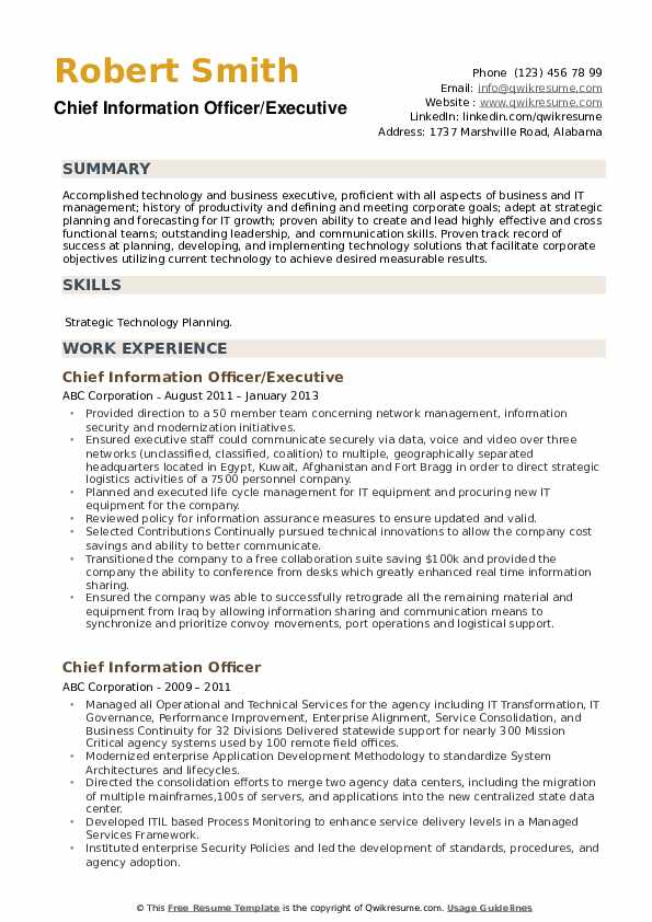 Chief Information Officer/Executive Resume Template