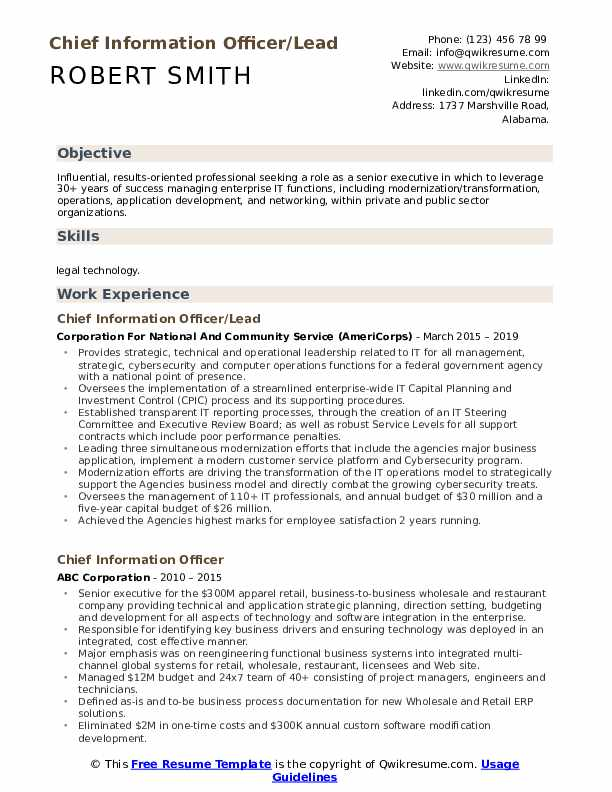 Chief Information Officer/Lead Resume Template