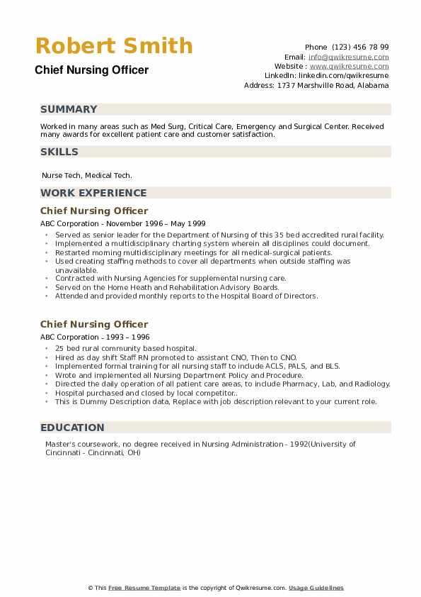 Chief Nursing Officer Resume example