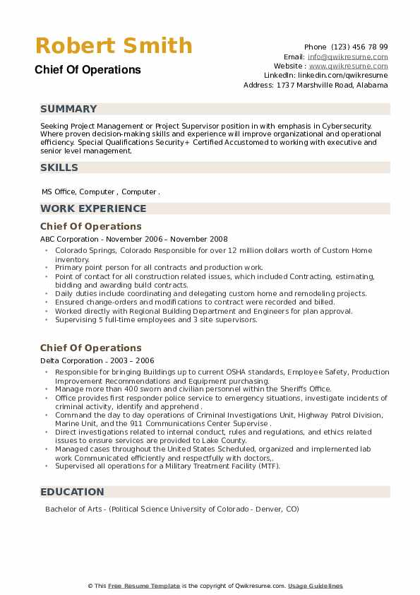 Chief Of Operations Resume example