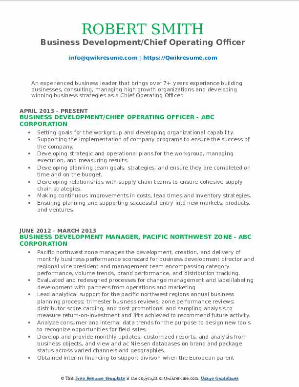 Business Development/Chief Operating Officer Resume Template