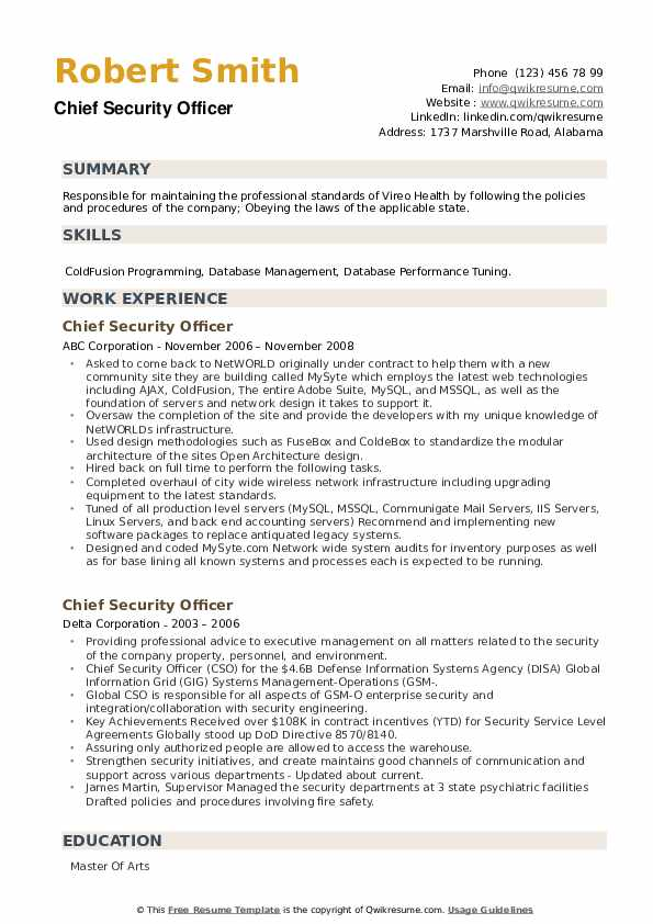 Chief Security Officer Resume example