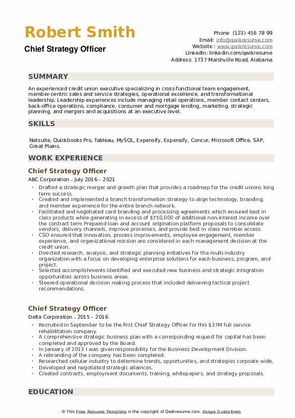 Chief Strategy Officer Resume example
