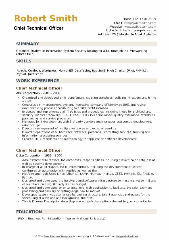 Chief Technical Officer Resume example