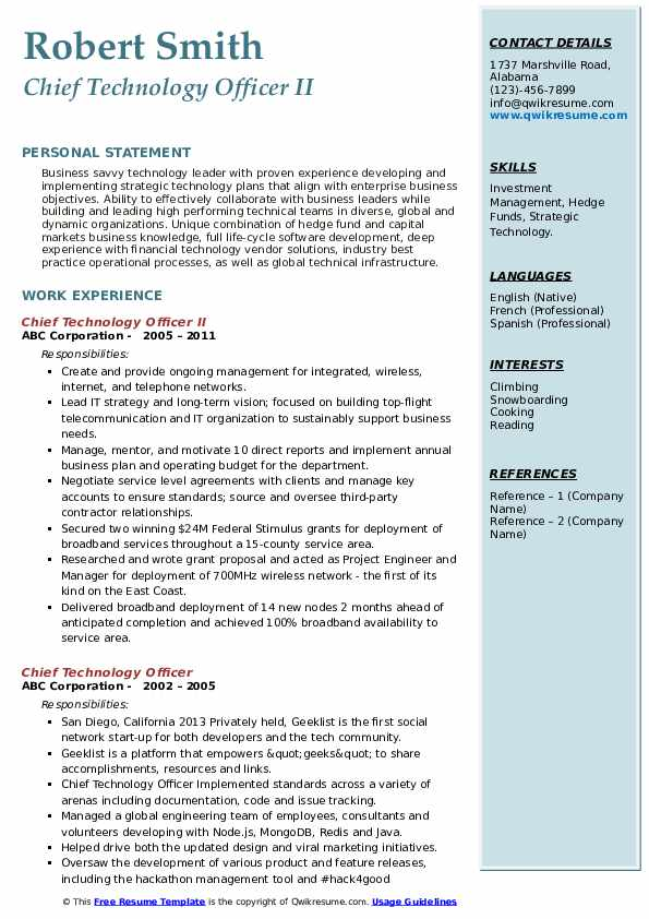 Chief Technology Officer II Resume Template