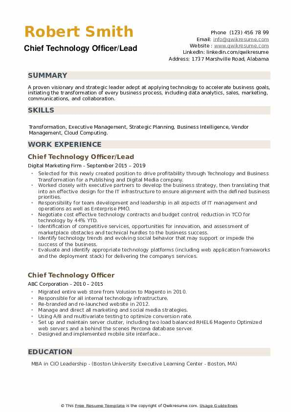 Chief Technology Officer/Lead Resume Sample