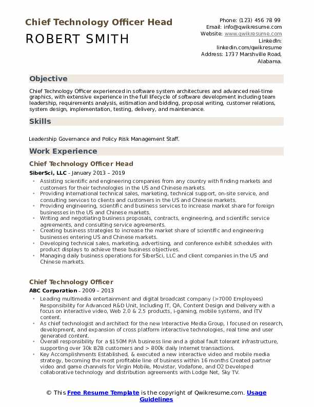 Chief Technology Officer Head Resume Format