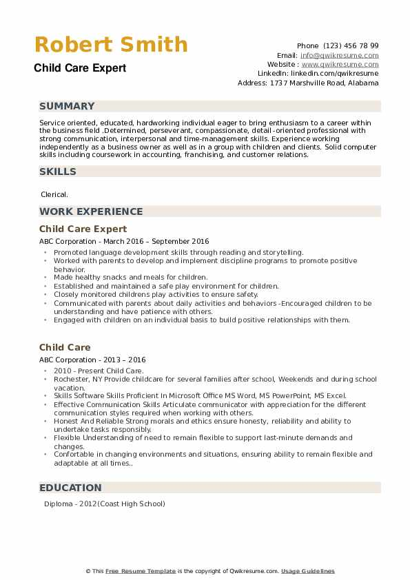 Child Care Expert Resume Example