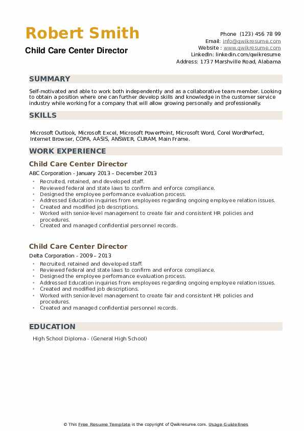 Child Care Center Director Resume example