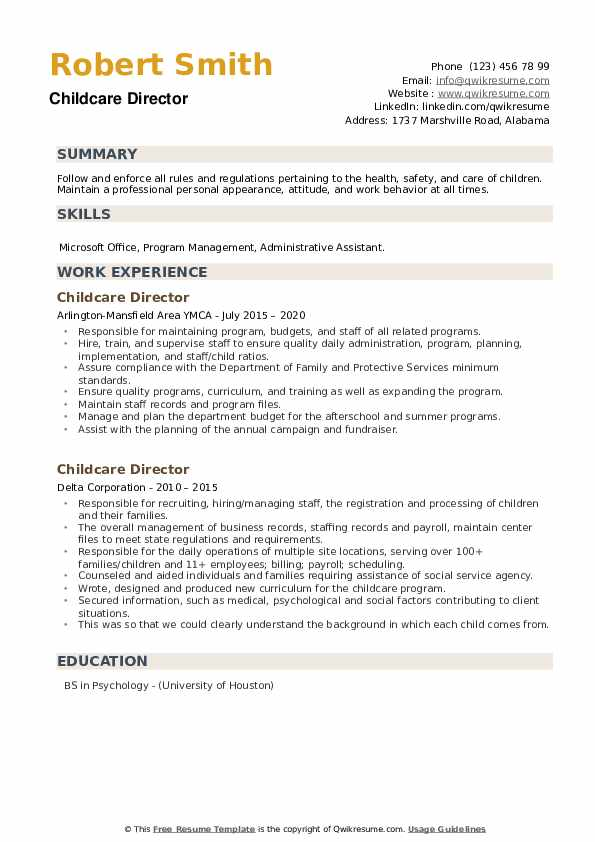 Childcare Director Resume example