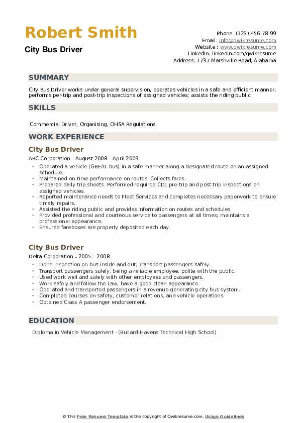 City Bus Driver Resume example