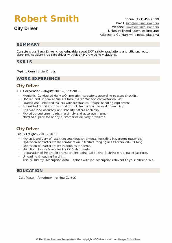 City Driver Resume example