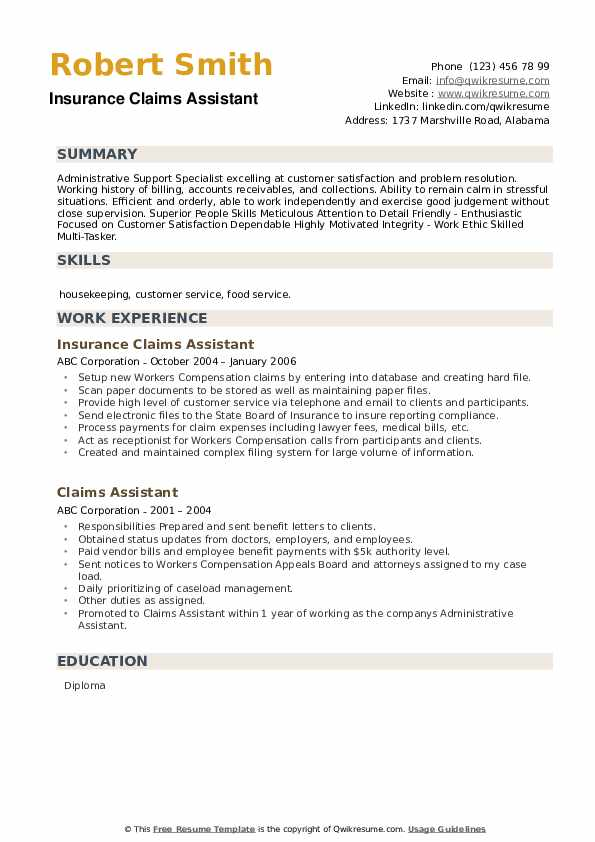 Insurance Claims Assistant Resume Model