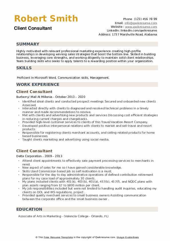 Client Consultant Resume example