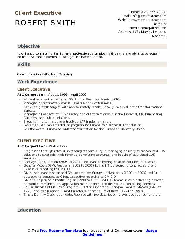 Client Executive Resume example