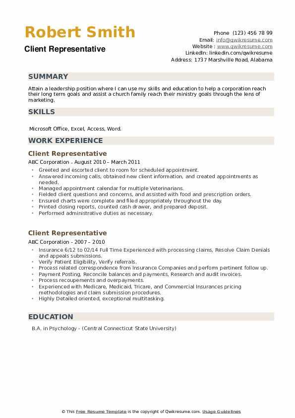 Client Representative Resume example