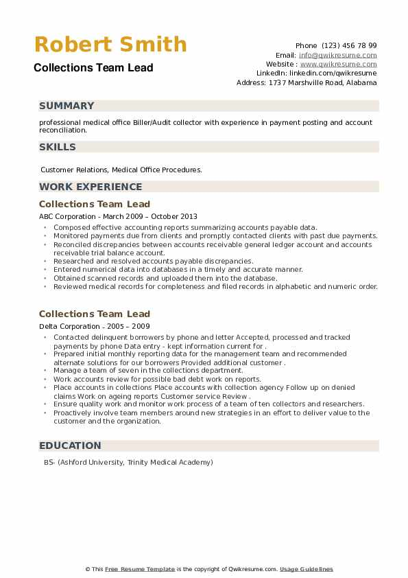 Collections Team Lead Resume example